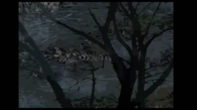 أفافاي نوفا - إيدير