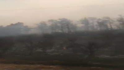 حرائق غابات ولاية خنشلة، الجزائر، يوليو 2021