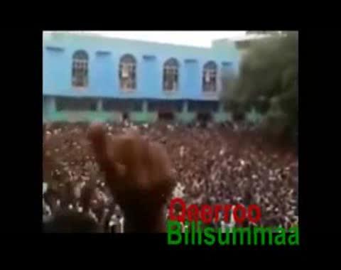 مظاهرات مسجد الأنور، أديس أبابا 2012