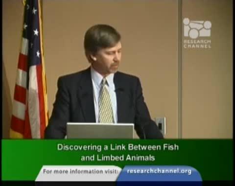 اكتشاف صلة بين الأسماك والحيوانات الراجلة
